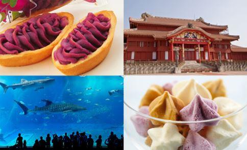 沖縄人気お土産ランキングTOP23!美味しい珍しいおすすめ商品!みんなが喜ぶのはどれ?