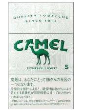 camel_00