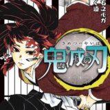 鬼滅の刃20巻(コミック)